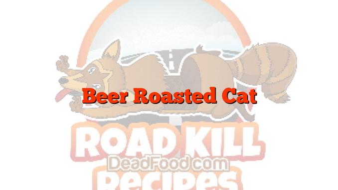 Beer Roasted Cat