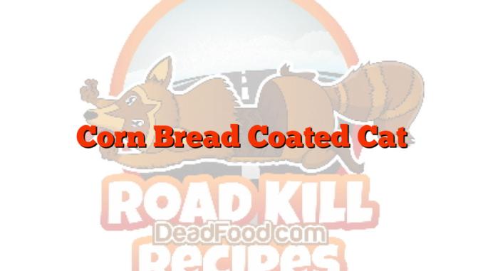 Corn Bread Coated Cat
