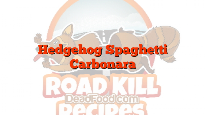 Hedgehog Spaghetti Carbonara