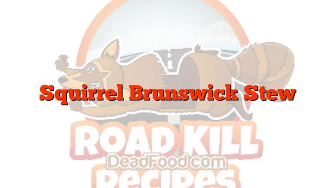 Squirrel Brunswick Stew