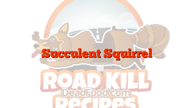 Succulent Squirrel
