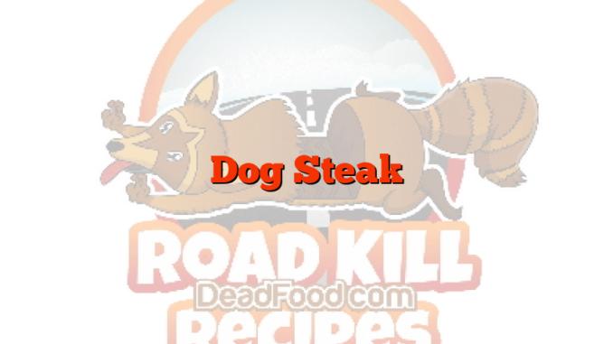 Dog Steak