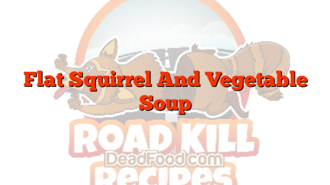 Flat Squirrel And Vegetable Soup