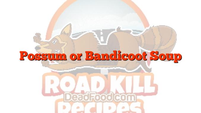 Possum or Bandicoot Soup