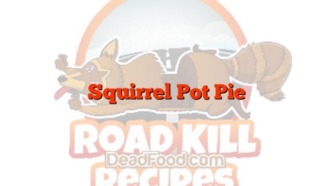 Squirrel Pot Pie