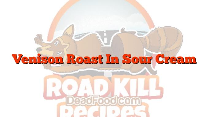 Venison Roast In Sour Cream